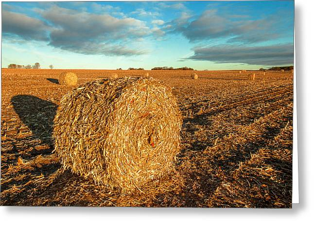 Fall Bale Greeting Card by Todd Klassy