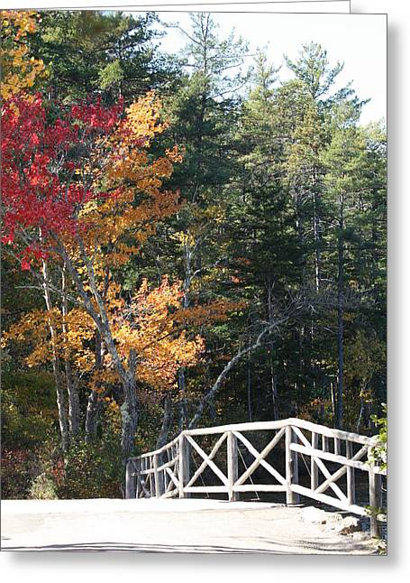 Fall Bridge Greeting Card by Sue Mayor