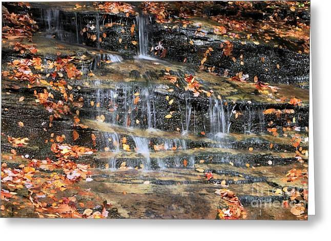 Fall Cascades Greeting Card