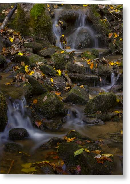 Greeting Card featuring the photograph Fall Cascades by Ellen Heaverlo