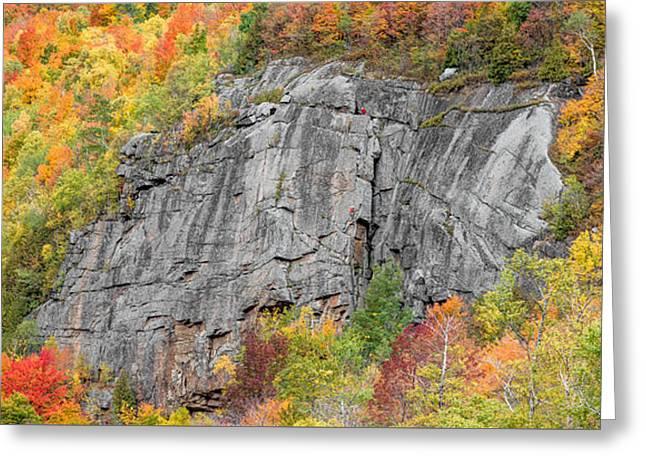 Fall Climbing Greeting Card