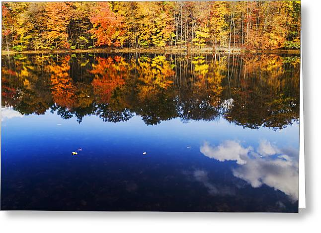 Fall Color And Sky Reflection Greeting Card by Vishwanath Bhat