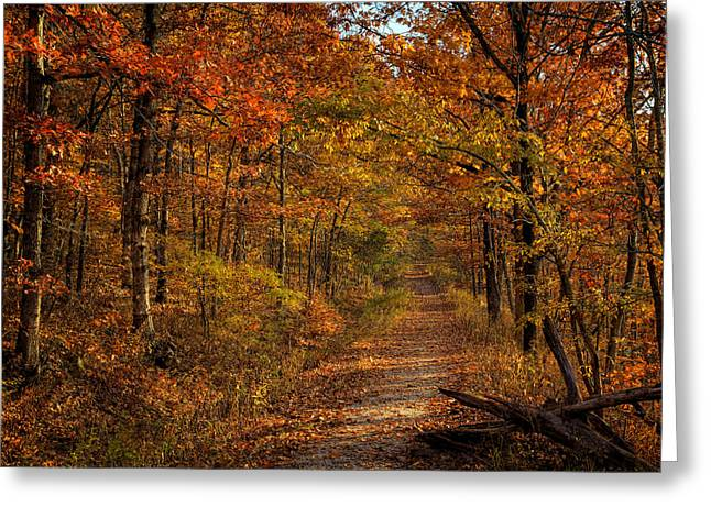 Greeting Card featuring the photograph Fall Color At Centerpoint Trailhead by Michael Dougherty