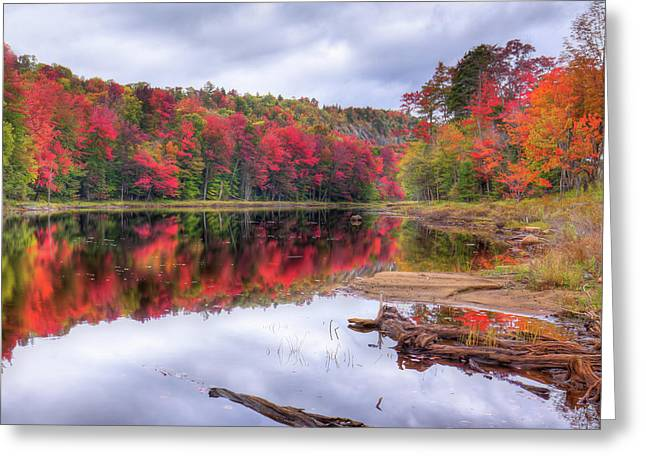 Greeting Card featuring the photograph Fall Color At The Pond by David Patterson