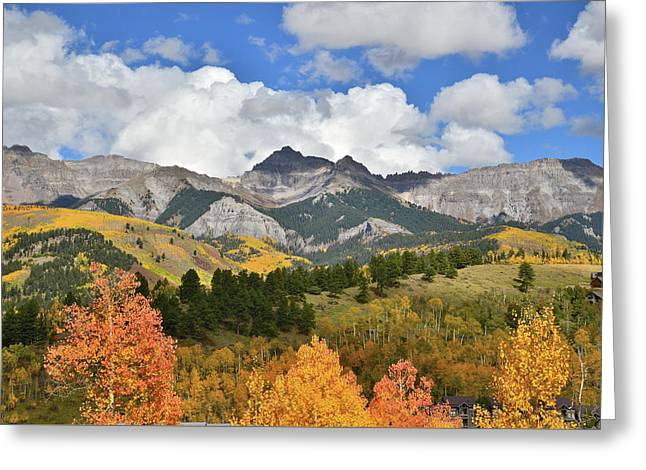 Fall Color In Telluride Greeting Card by Ray Mathis