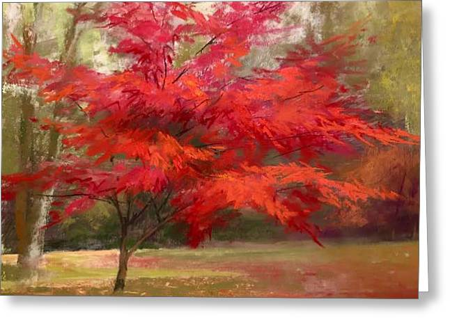 Fall Color Greeting Card by Jeanne Rosier Smith
