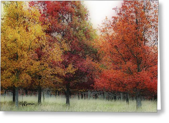 Chalco Hills Recreation Area Greeting Cards - Fall Color Greeting Card by Jeff Swanson