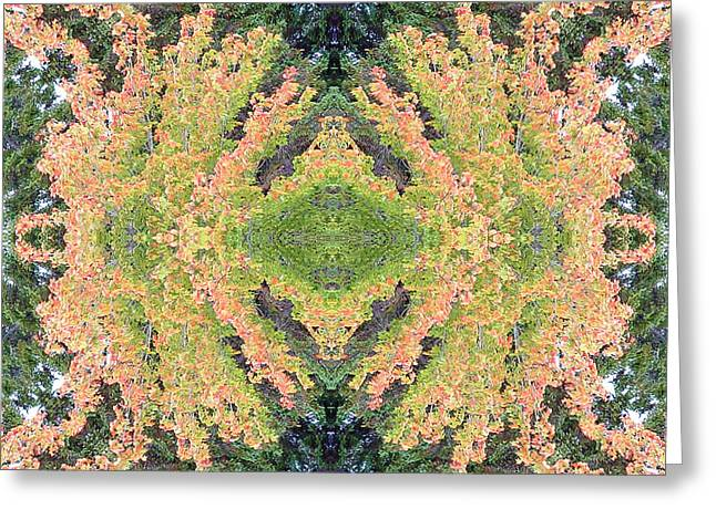 Greeting Card featuring the photograph Fall Color Kaleidoscope by Bill Barber