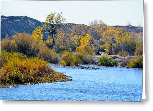 Greeting Card featuring the photograph Fall Color On The Yuba  by AJ Schibig