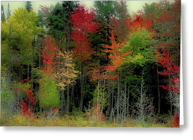 Greeting Card featuring the photograph Fall Color Panorama by David Patterson
