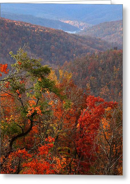 Greeting Card featuring the photograph Fall Color Ponca Arkansas by Michael Dougherty