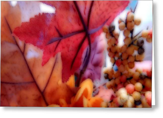 Fall Colors # 6059 Greeting Card