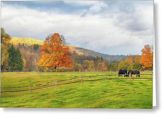 Greeting Card featuring the photograph Fall Colors After The Storm. by Jeff Folger