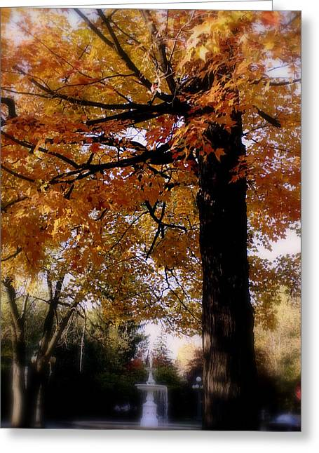 Fall Colors And Fountain Greeting Card by Martin Morehead