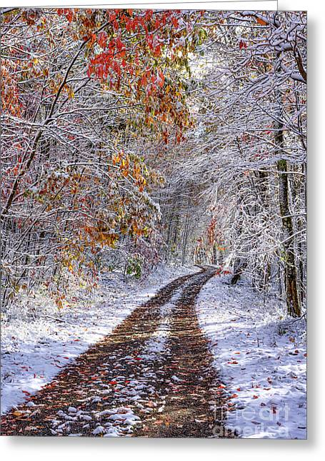 Fall Colors And Snow Greeting Card