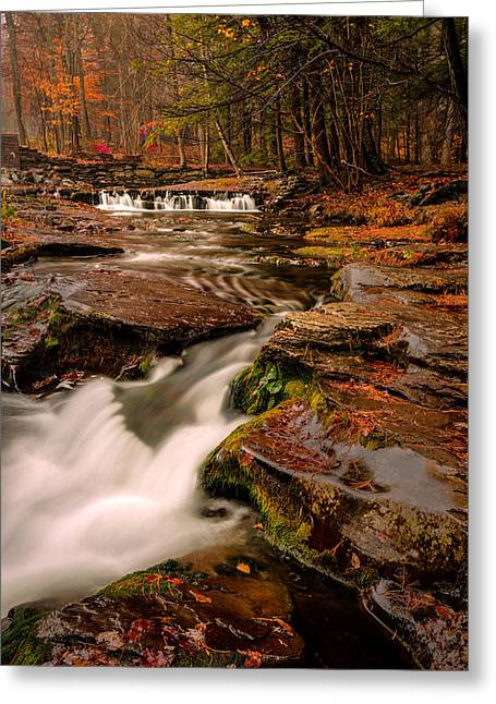 Fall Colors Around The Stream Greeting Card
