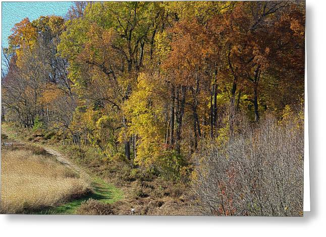 Fall Colors As Oil Greeting Card