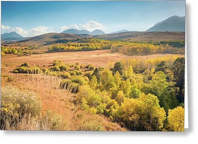 Fall Colors At Dunderberg Meadows Greeting Card