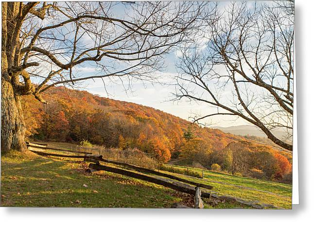 Fall Colors At The Moses Cone Estate Greeting Card