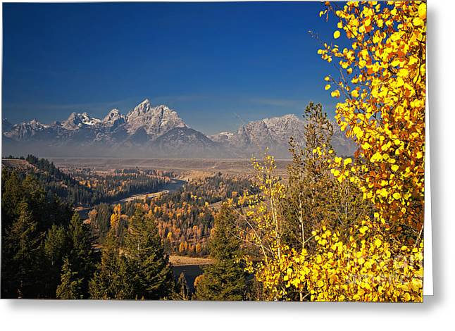 Fall Colors At The Snake River Overlook Greeting Card