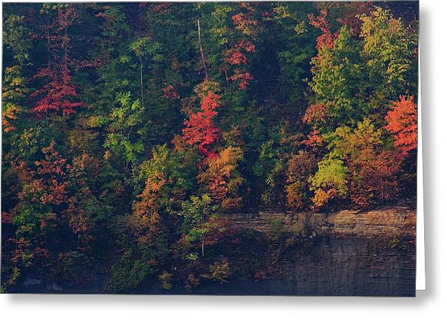 Greeting Card featuring the digital art Fall Colors by Christopher Meade