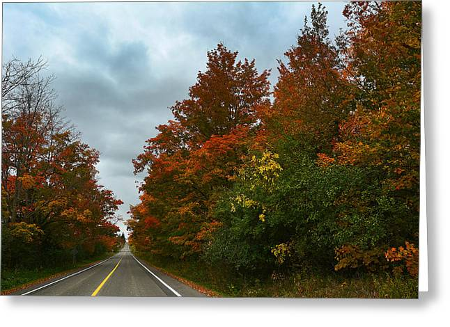 Fall Colors Dramatic Sky Greeting Card