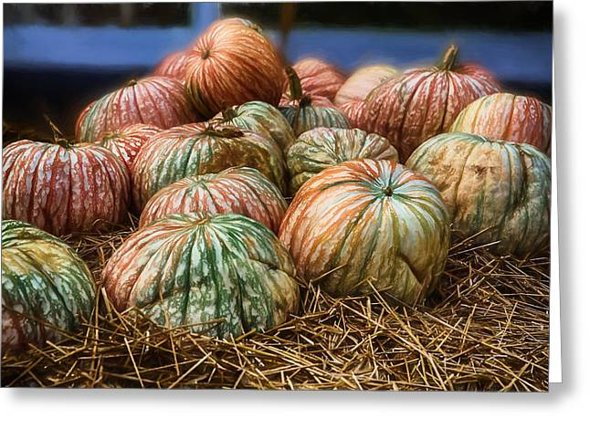 Fall Colors In A Pumpkin Display Greeting Card
