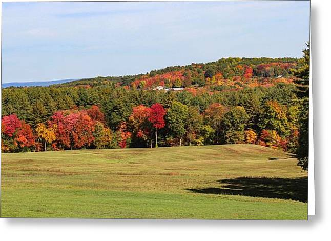 Fall Colors In Easthampton Greeting Card
