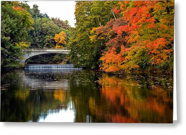 Fall Colors In New York State Greeting Card by Don Mennig