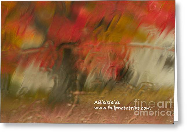Fall Colors In The Rain Greeting Card