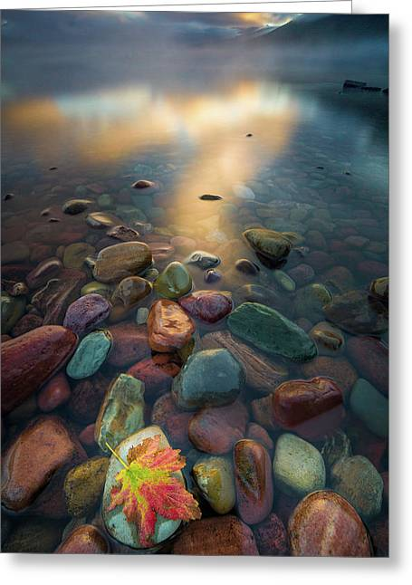 Fall Colors // Lake Mcdonald, Glacier National Park  Greeting Card