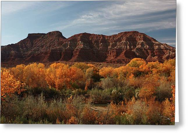 Fall Colors Near Zion Greeting Card