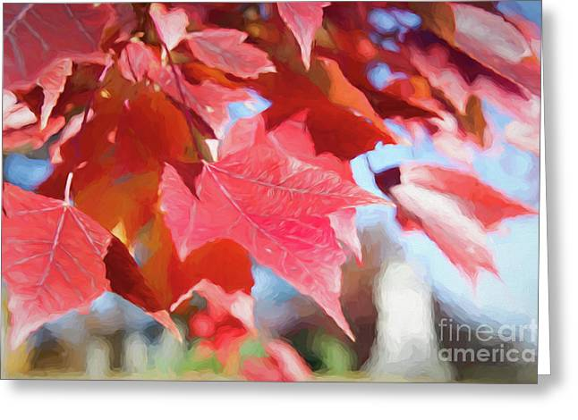 Fall Colors Oil Greeting Card