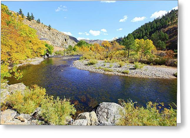 Fall Colors On The Poudre Greeting Card