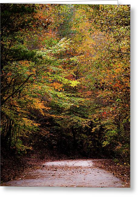 Greeting Card featuring the photograph Fall Colors On The Trail by Shelby Young