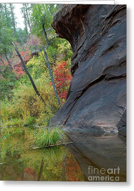 Fall Colors Peek Around Mountain Vertical Greeting Card by Heather Kirk