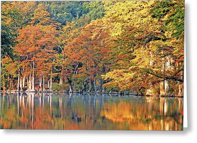 Fall Colors Reflected Greeting Card