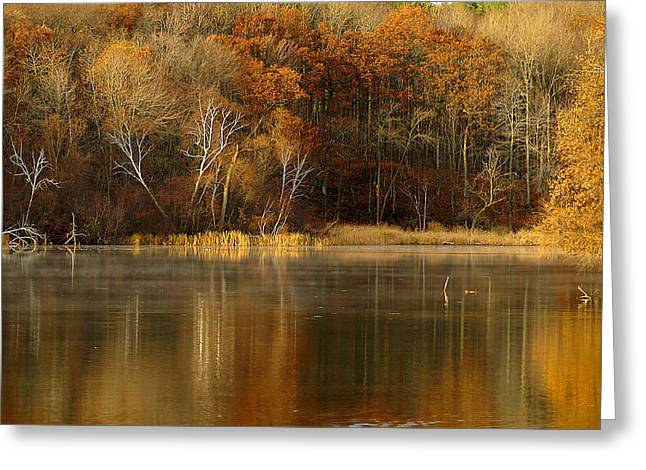 Fall Cove Greeting Card