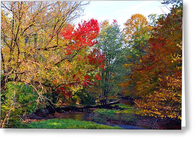Fall Creek Greeting Card by Brittany H