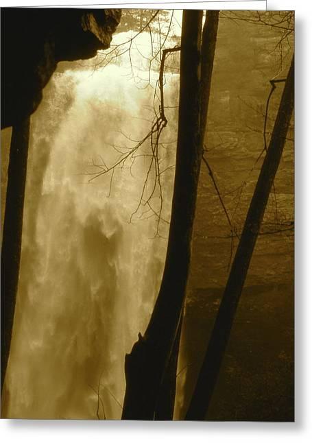 Fall Creel Falls In Sepia Greeting Card