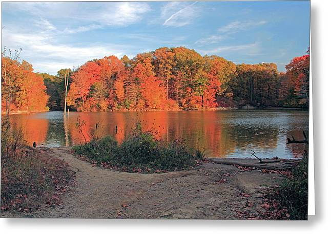 Fall Day At The Creek Greeting Card