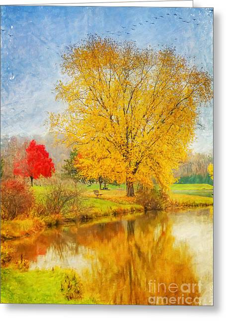 Fall Day On The Lake Greeting Card by Randy Steele
