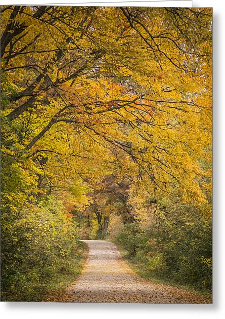 Fall Drive 2015-1 Greeting Card