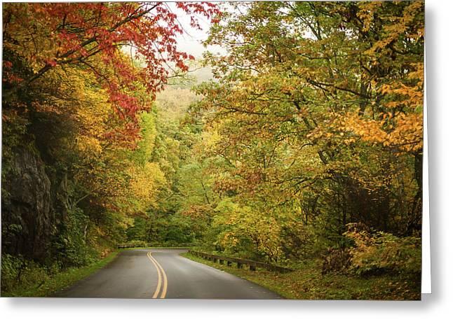 Fall Drive On The Blue Ridge Parkway Greeting Card by Terry DeLuco