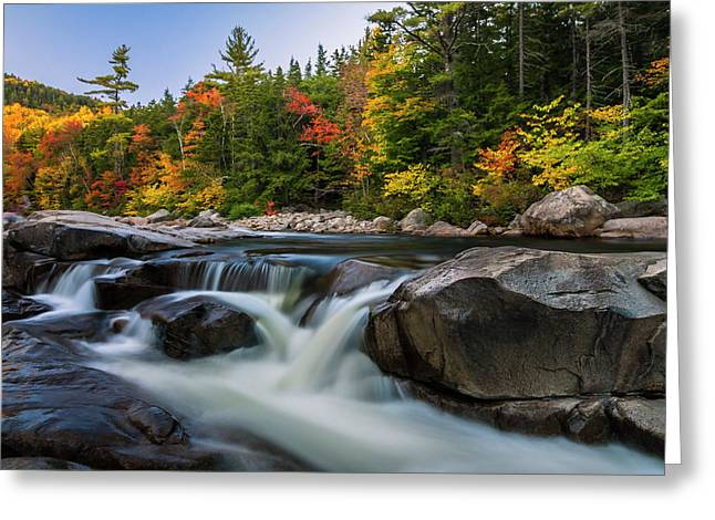 Fall Foliage Along Swift River In White Mountains New Hampshire  Greeting Card
