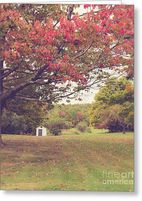 Fall Foliage And Old New England Shed Greeting Card by Edward Fielding