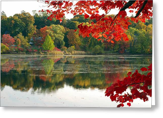 Fall Foliage And Reflections Greeting Card