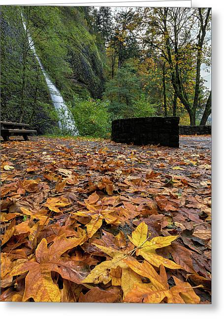Fall Foliage At Horsetail Falls Greeting Card by David Gn