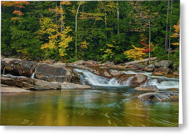 Fall Foliage In Autumn Along Swift River In New Hampshire Greeting Card