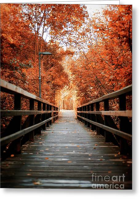 Fall Foliage In The Heart Of Berlin Greeting Card by Ivy Ho